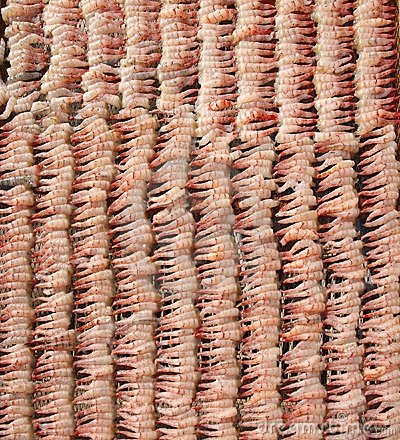 Shrimps Drying in the Sun