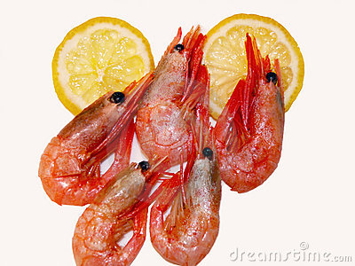 Shrimps & lemon