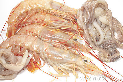 Shrimps and squid