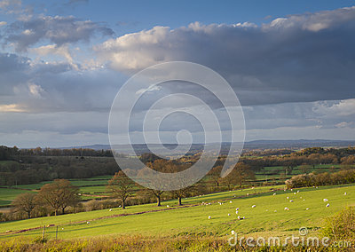 Shropshire countryside farmland