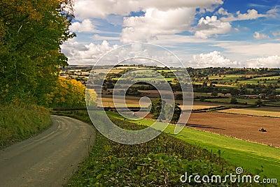 Shropshire Hills (Hughley)