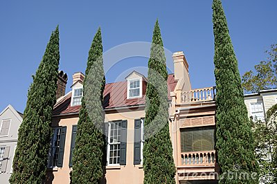 Shrubs and Southern Mansion