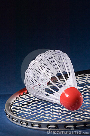 Shuttlecock and Badminton 8