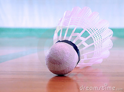 Shuttlecock on the floor