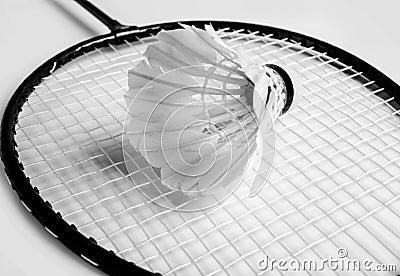 Shuttlecock a racket of badminton