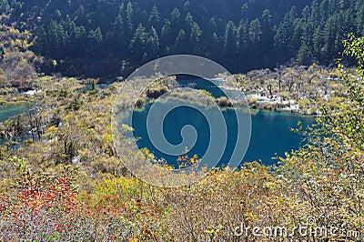Shuzheng lakes in Jiuzhaigou