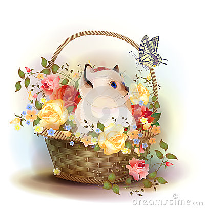 siamese kitten sitting in a basket with ros