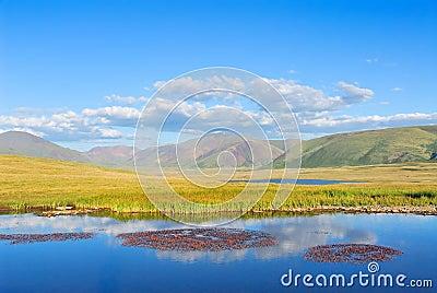 Siberia. Altai. View on mountain valley