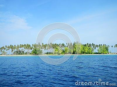 Sibuan Island with trees