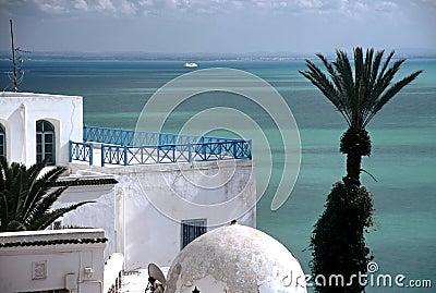 Sid bou Said,Tunisia