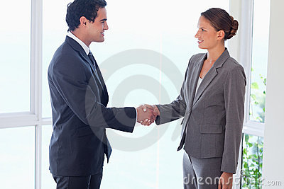 Side view of business partner shaking hands