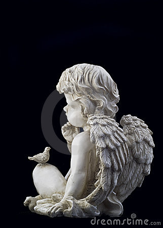 Side view of small angel