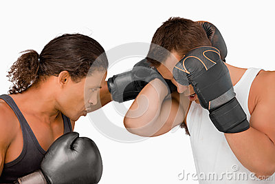 Side view of two male boxers