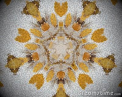 5 sided star abstract extrude mandala Stock Photo