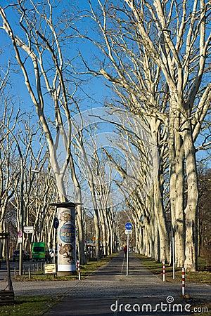 Sidewalk in the park Treptow-Koepenick Editorial Image