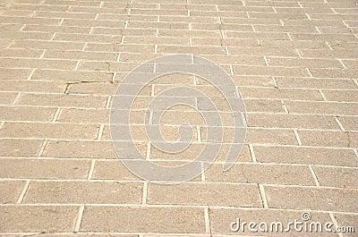 Sidewalk pattern in a park