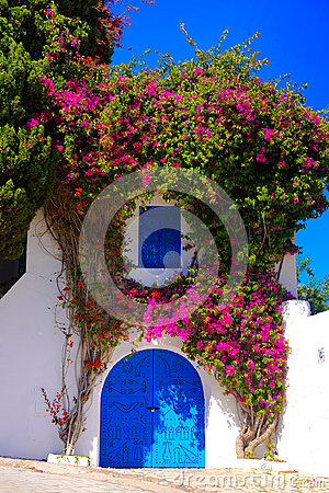 Free Sidi Bou Said, Beautiful Arabic Blue Door, Mediterranean Architecture Royalty Free Stock Images - 98049419