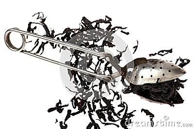 Sieve for tea on white background