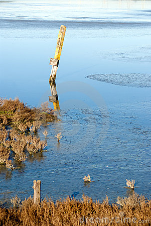 Sign post in flooded marsh