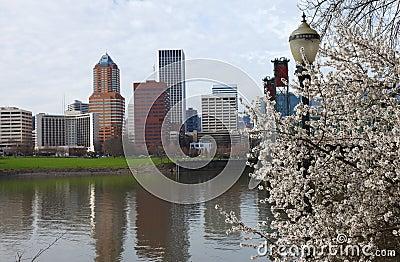 Sign of Spring, Portland Oregon.