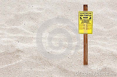 Turtle Nesting Sign