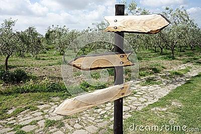 Signes en bois de flèche directionnelle de carrefour