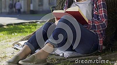 Signora che legge romanzo romantico in parco, preoccupantesi per gli eroi del libro, best-seller video d archivio