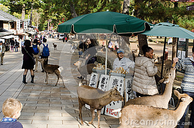Sika deer feeding booth in Nara Editorial Photography