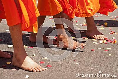 Sikh People celebration