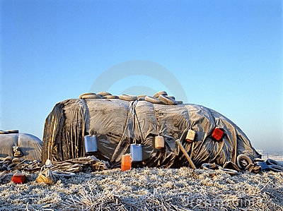 Silage in winter