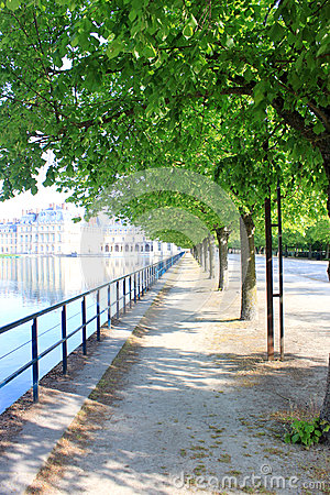 Silent avenue in Fontainebleau