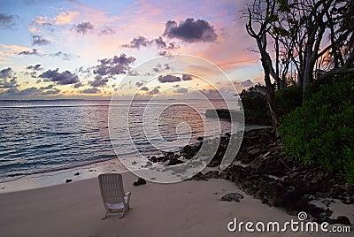 silent beach dawn
