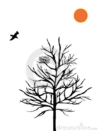 Silhouette of bird and nest