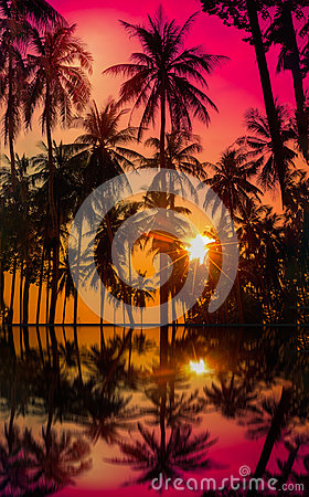 Free Silhouette Coconut Palm Trees On Beach At Sunset. Royalty Free Stock Photography - 95087977