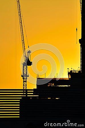 Silhouette crane 1