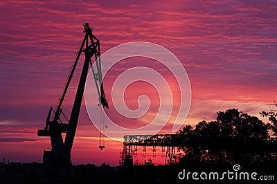 Silhouette of crane at sunrise