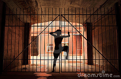 Silhouette of dancing girl, she climbing on latice