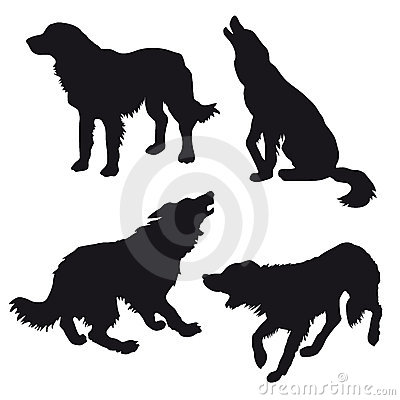 Silhouette of the dog