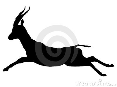 Silhouette of gazelle