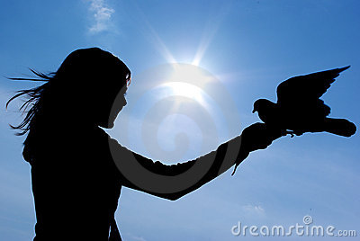 Silhouette of gril and bird