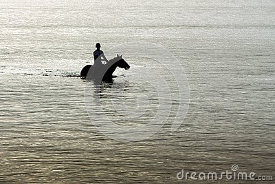 Silhouette of horse and rider in ocean.
