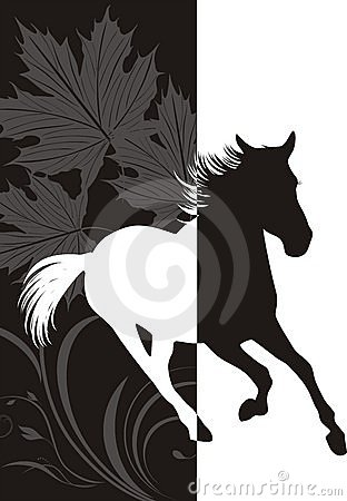Silhouette of hurrying horse