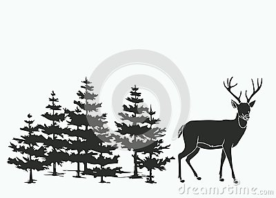 Deer in the woods Vector Illustration