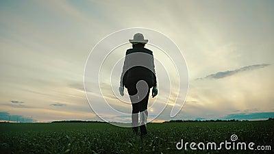 Silhouette jonge mooie meisjesboer in dat veld bij zonsondergang Begrip herfstoogst, landbouw stock video