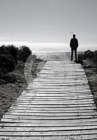 silhouette man on beach path stock photos image 12663373