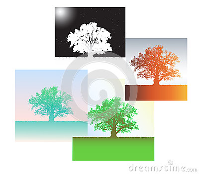 Silhouette of an oak and four seasons.