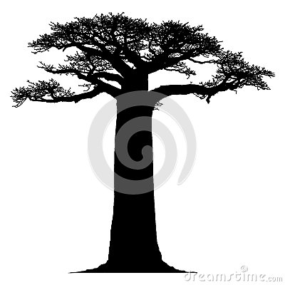 Free Silhouette Of A Baobab Tree Royalty Free Stock Image - 35128826