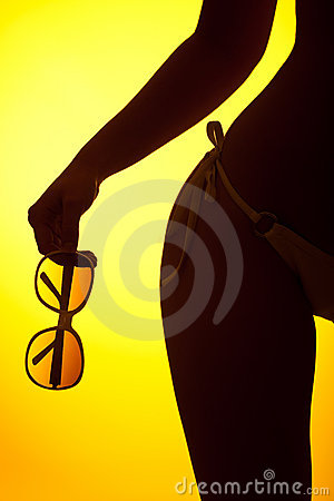 Free Silhouette Of Female Body With Bikini Royalty Free Stock Photography - 10610367