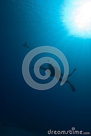 Silhouette of a scuba diver