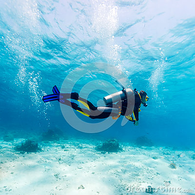 Silhouette of Scuba Diver near Sea Bottom